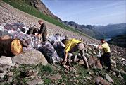 waldarbeiten2-meilensteine-alpenschutzverband