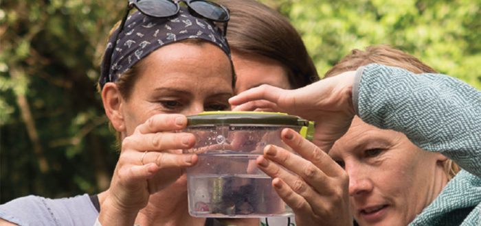 naturvielfalt-2018-kurse-land-vorarlberg
