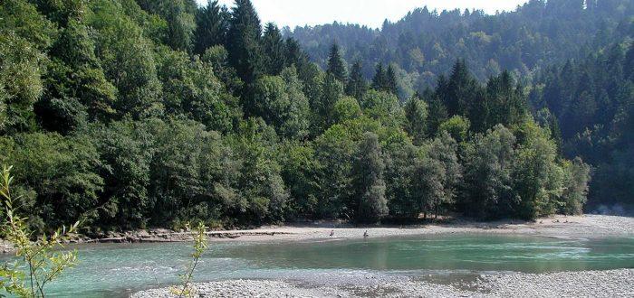 Führung-durch-das-Natura-2000-Gebiet-Bregenzerachschlucht